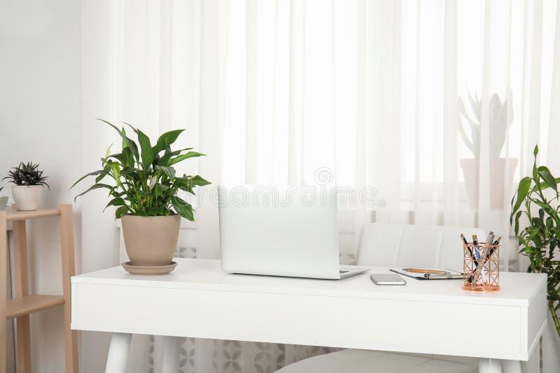 Houseplants i laptop na stole zdjęcia royalty free