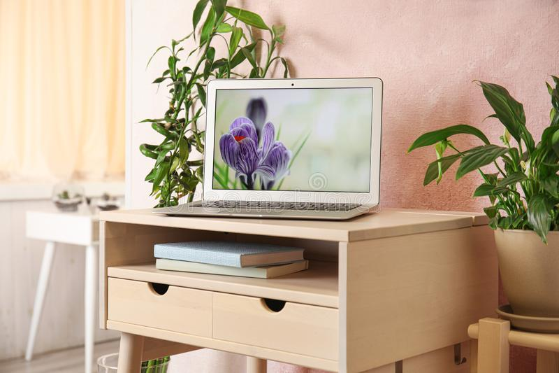 Houseplants i laptop na stole zdjęcie royalty free