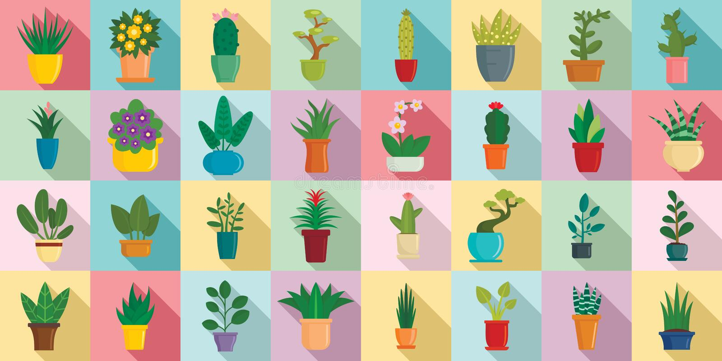 Houseplantssymbolsuppsättning, plan stil vektor illustrationer