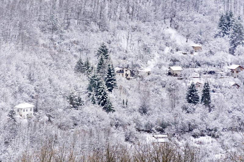 Houses in the beautiful Winter mountain. Beautiful Winter mountain landscape - snowy trees and houses royalty free stock image