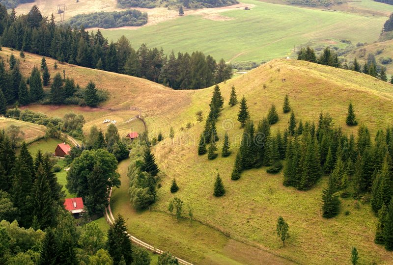 Houses in countryside. Aerial view of houses in wooded or forested green countryside stock photos