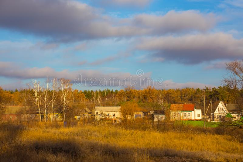 Houses in the forest illuminated by the setting sun. royalty free stock photography