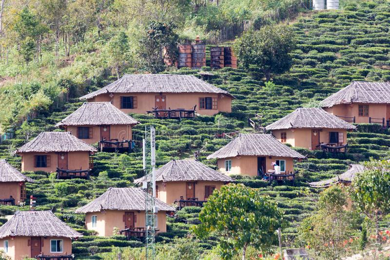Houses and tea lantation on a hillside in the Kuomintang Chinese village of Mae Aw or Baan Rak Thai, Mae Hong Son, Thailand. Houses and tea plantation on a stock images