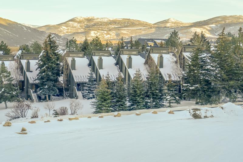 Houses and trees against mountain in Park City. Scenic view of snowy houses and lush trees in Park City, Utah on a sunny day. A striking sunlit mountain and royalty free stock photo