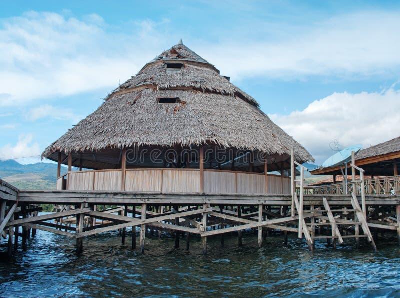 Housesat at lake Sentani, New Guinea. Houses on an island on the lake Sentani, New Guinea royalty free stock image