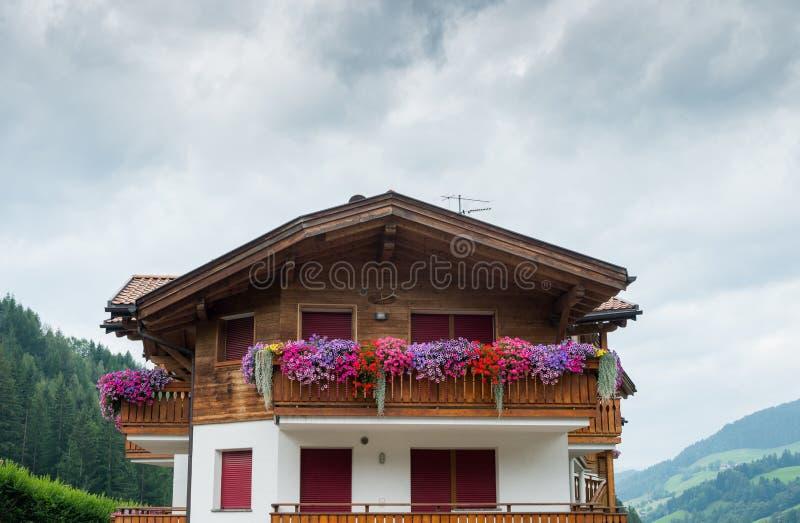 housese女低音阿迪杰/南部蒂罗尔,意大利典型的山 库存图片