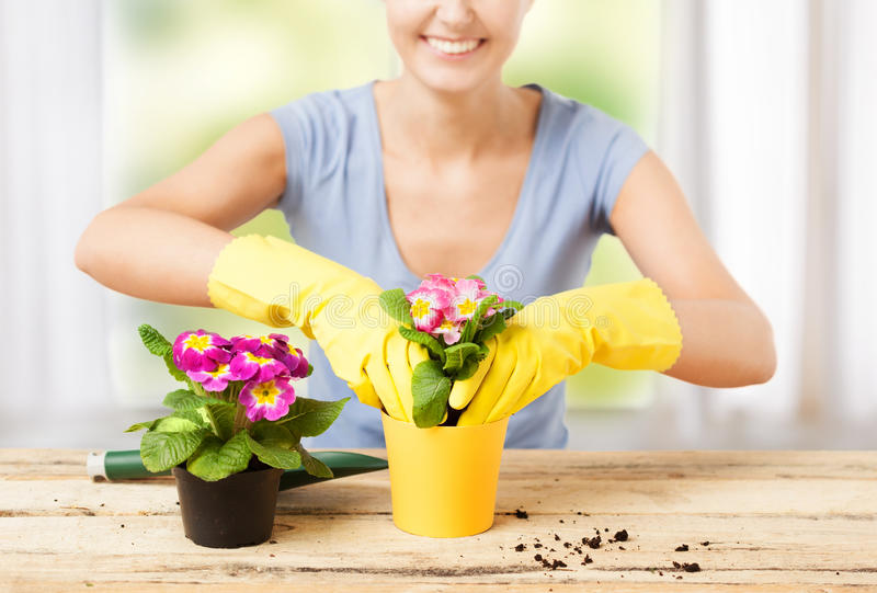 Download Housewife With Flower In Pot And Gardening Set Stock Image - Image: 38324217