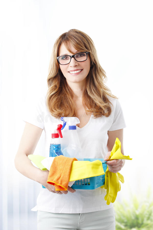 Housewife at work stock photography