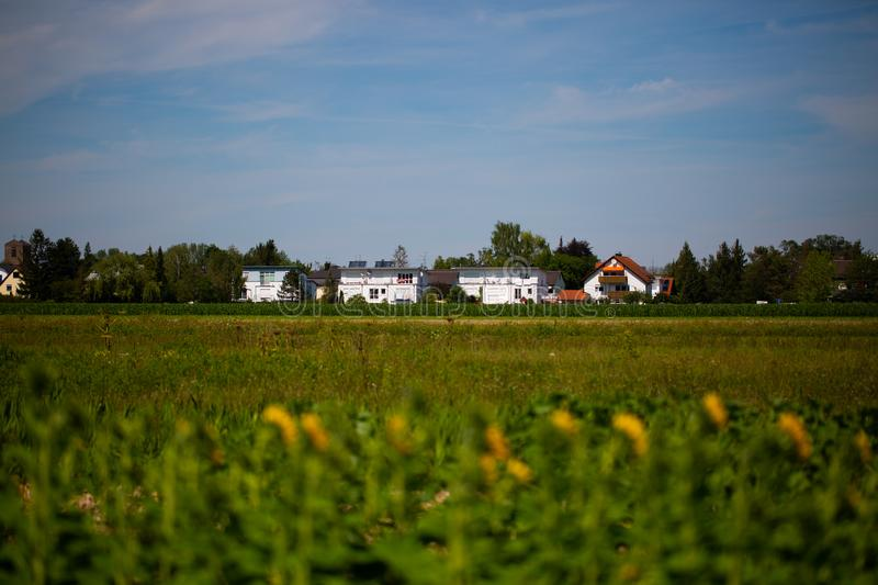 Housing estate in the countryside, modern urbanization, sunflower field. Housing stock photography