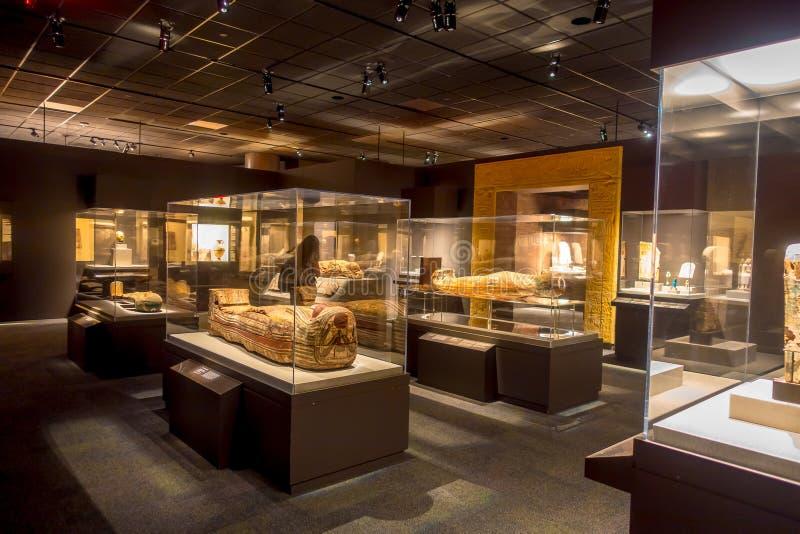 HOUSTON, DE V.S. - 12 JANUARI, 2017: Expositie van verschillende sarcofaag binnen van het gebouw in het Oude gebied van Egypte stock afbeelding