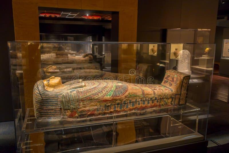HOUSTON, usa - STYCZEŃ 12, 2017: Ekspozycja różny sarkofag wśrodku budynku w Antycznego Egipt terenie zdjęcia stock