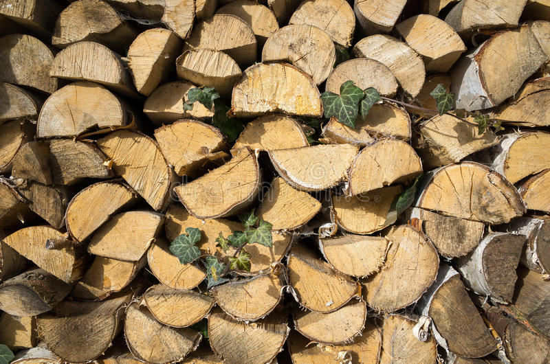 Hout royalty-vrije stock afbeelding