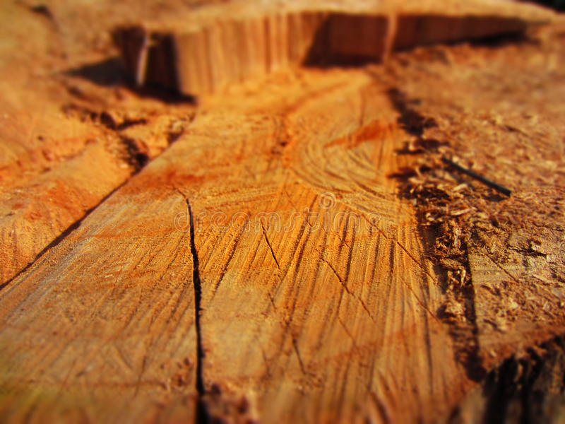 Hout stock afbeelding