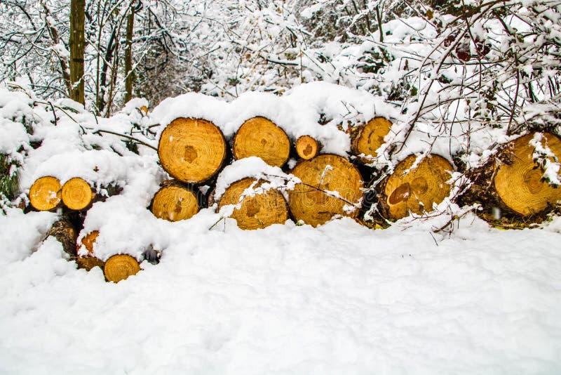 Hout door sneeuw wordt behandeld die stock afbeelding