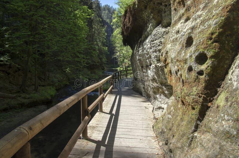 Hout en rotslandschap in Boheems Zwitserland, het rotsachtige ravijn van Kammintz George, het Saksische Nationale Park van Zwitse stock afbeeldingen