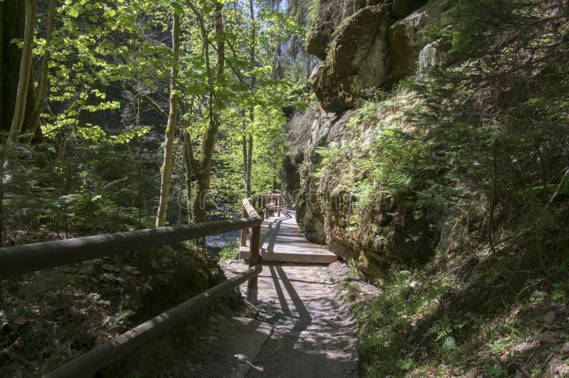 Hout en rotslandschap in Boheems Zwitserland, het rotsachtige ravijn van Kammintz George, het Saksische Nationale Park van Zwitse royalty-vrije stock afbeelding