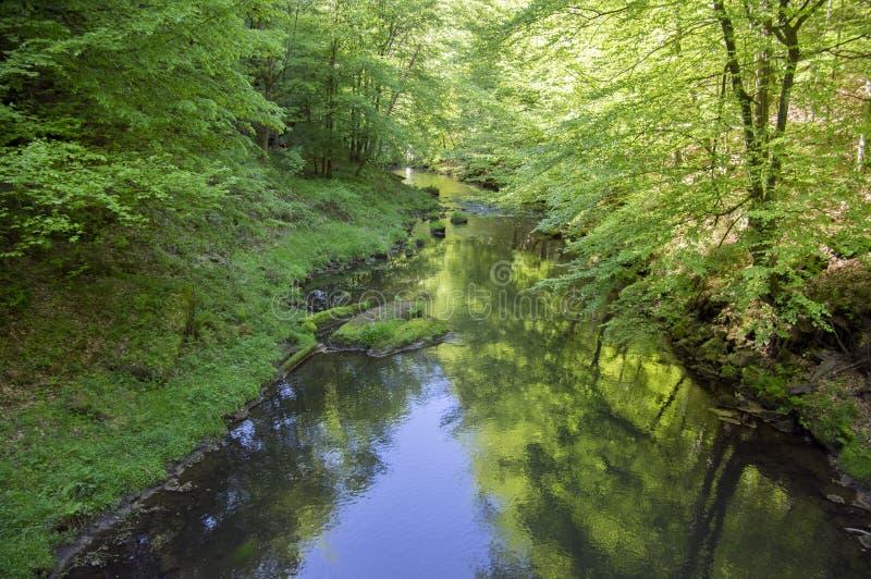 Hout en rotslandschap in Boheems Zwitserland, het rotsachtige ravijn van Kammintz George, het Saksische Nationale Park van Zwitse royalty-vrije stock foto