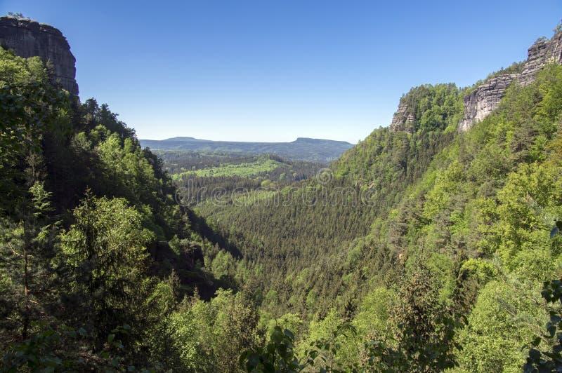 Hout en rotslandschap in Boheems Zwitserland, nationaal natuurgebied met verbazende aard, het Saksische Nationale Park van Zwitse royalty-vrije stock afbeeldingen