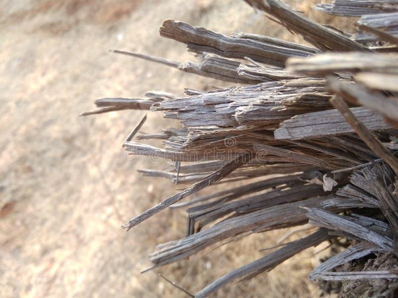 hout gebroken stuk royalty-vrije stock foto's