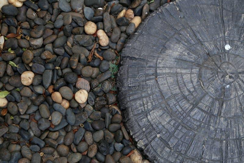 Hout onder stenen royalty-vrije stock afbeelding