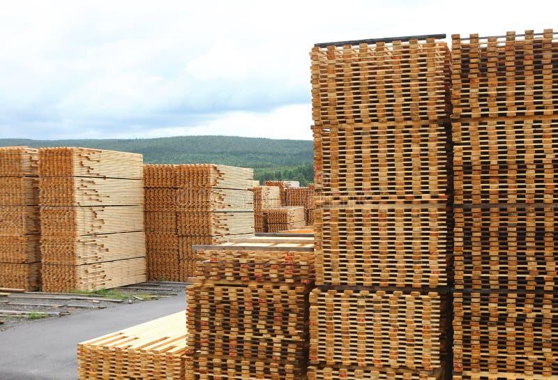 Hout of Timmerhoutwerf met Gestapelde Pijnboom stock afbeeldingen