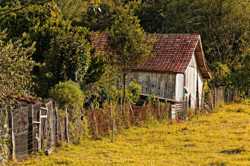 Hout in Urubici, Santa Catarina-staat in zuidelijk Brazilië wordt afgeworpen dat royalty-vrije stock afbeelding