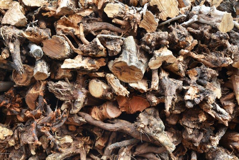 Hout voor Traditionele Broodoven stock foto