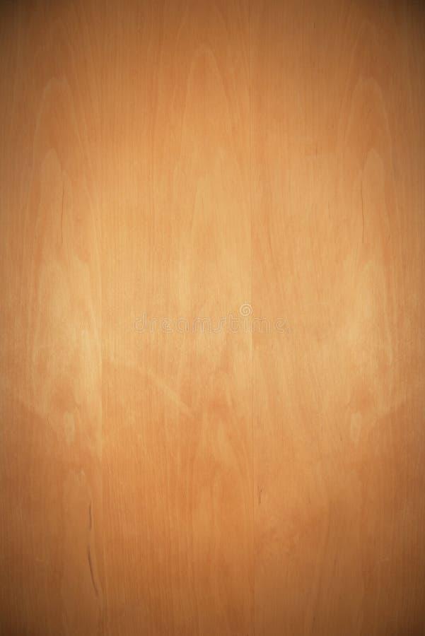 Houten achtergrondelsboom met schijnwerper stock afbeelding