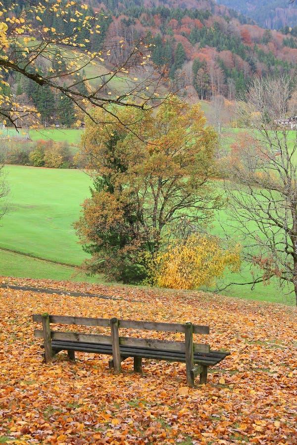 Houten bank in idyllisch herfstlandschap royalty-vrije stock afbeelding