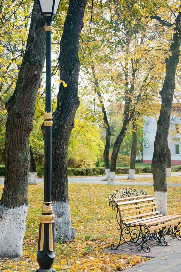Houten bech met metaaldecoratie die dichtbij aardige straatlantaarn in de herfstpark blijven stock foto