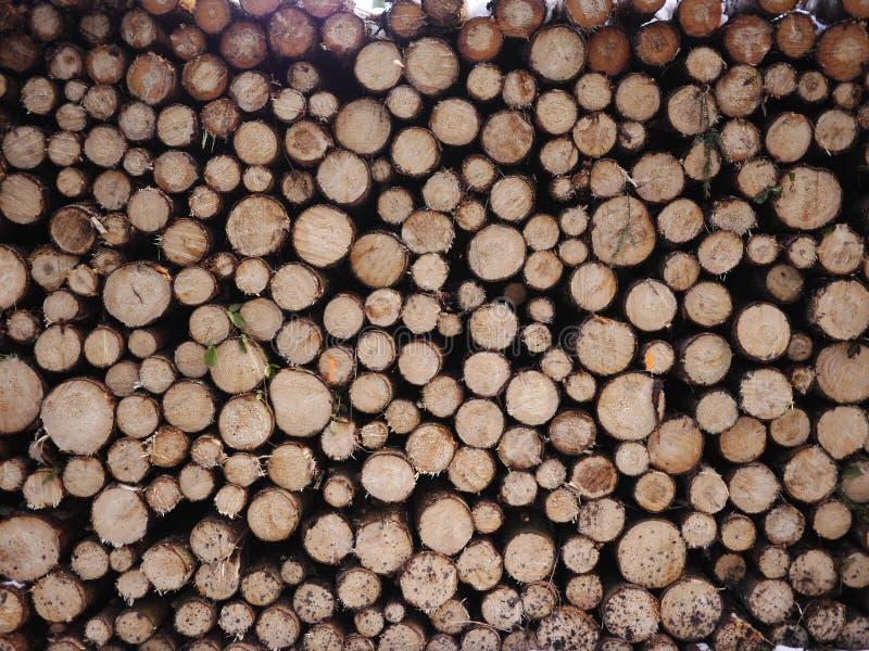 Houten brandhout royalty-vrije stock foto's