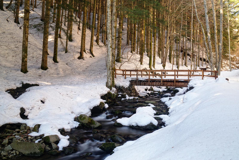 Houten brug in de natuurlijke reserve in de winter royalty-vrije stock fotografie