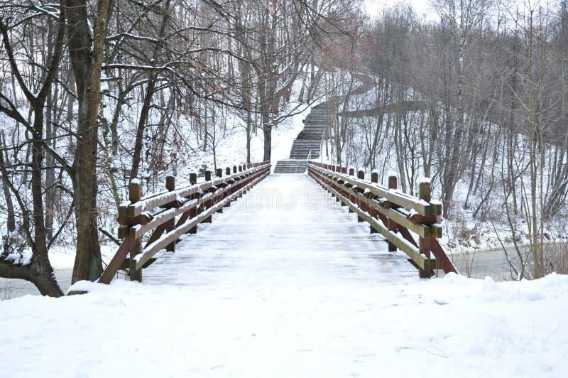 Houten brug in de winter royalty-vrije stock afbeelding