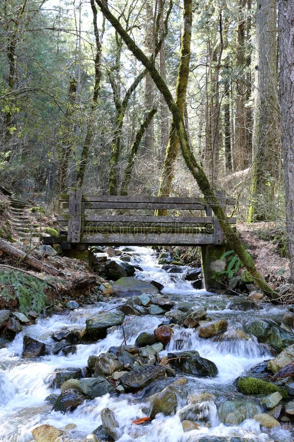 Houten brug die een bergstroom kruisen stock foto