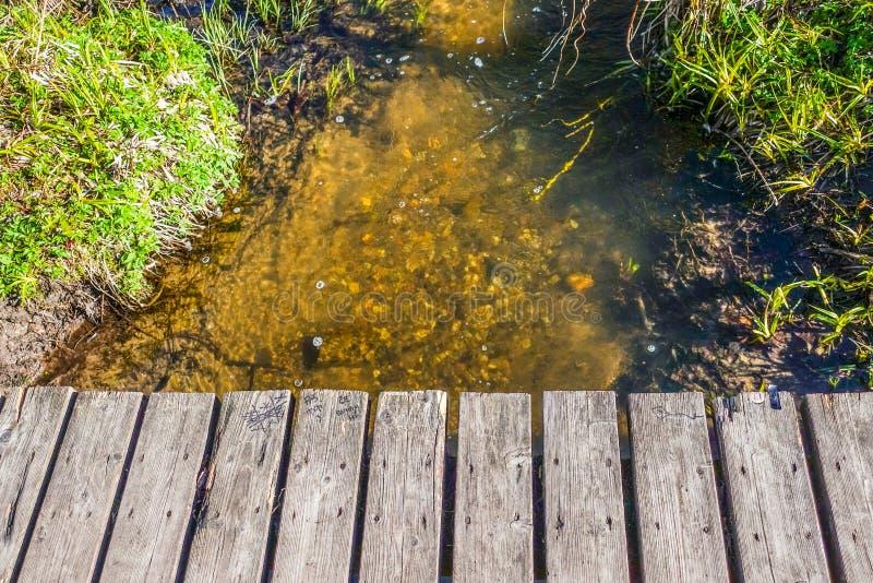 Houten brug en water met gras stock afbeelding