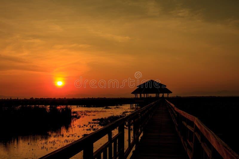 Houten Brug in lotusbloemmeer op zonsondergangtijd royalty-vrije stock foto
