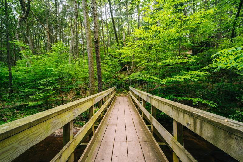 Houten brug op een sleep in Ricketts Glen State Park, Pennsylvania royalty-vrije stock fotografie