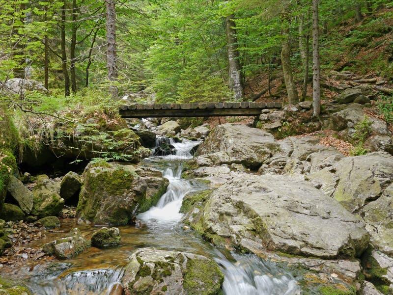 Houten brug over de waterval Riesloch stock fotografie