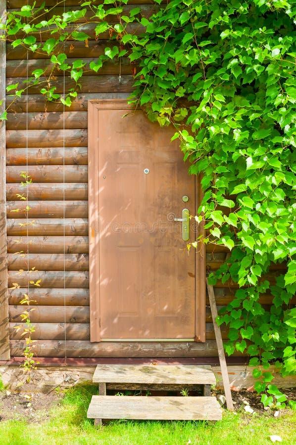 Houten bruine deur die door druivenbladeren wordt ontworpen - aardachtergrond stock foto