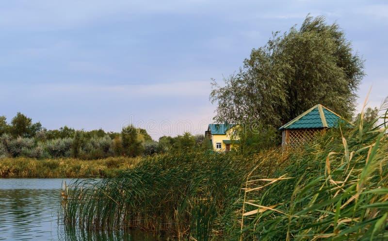 houten cabine dichtbij de rand van een kleine kleine rivier of een vijver in het midden van weelderig gebladerte die zonsondergan royalty-vrije stock foto's