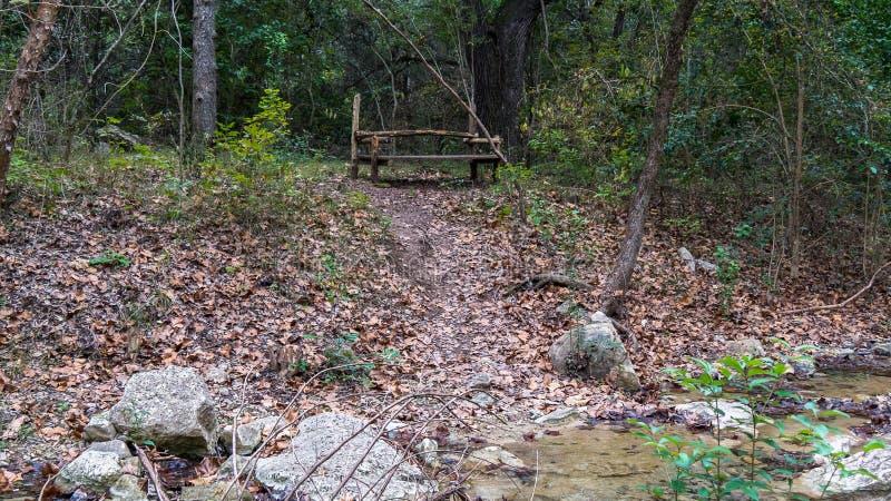 Houten die bank bovenop kleine heuvel boven langzame lopende stroom in een bos wordt geplaatst royalty-vrije stock foto's