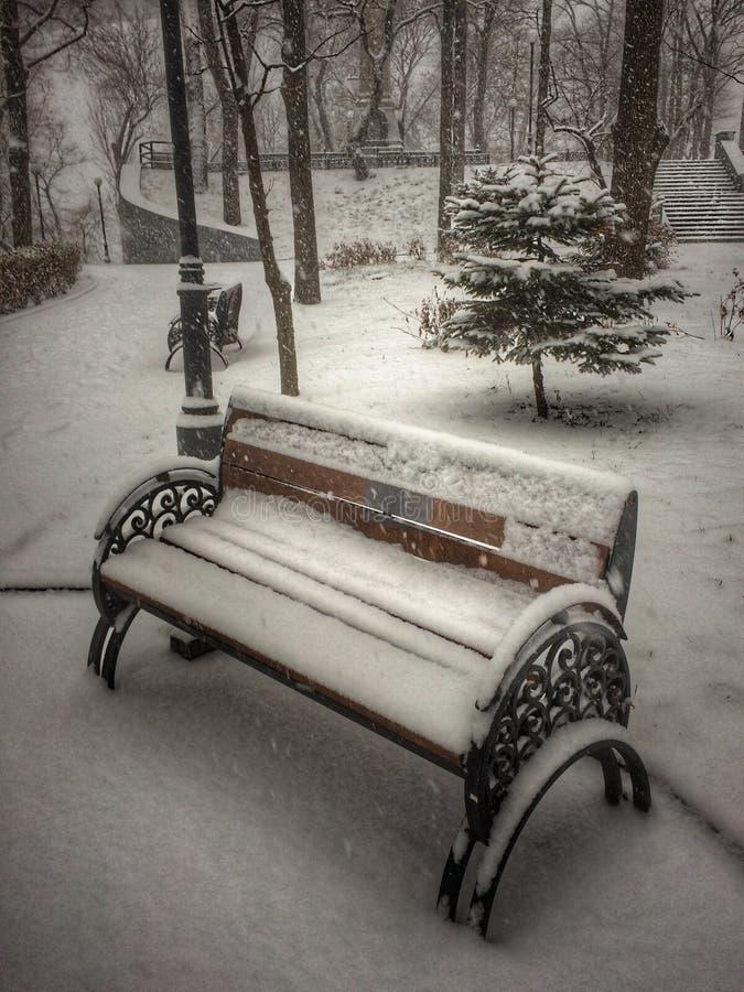 Houten die bank met metaalwapens met intacte sneeuw worden behandeld stock afbeelding