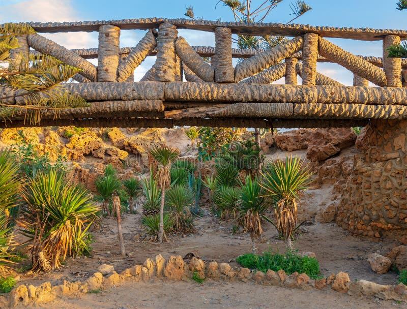 Houten die brug van palmboomstammen over een holtehoogtepunt van bomen bij Montaza-park in de zomertijd wordt gemaakt royalty-vrije stock foto's