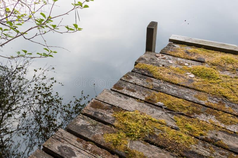 Houten die dok door mos bij een kalm meer wordt behandeld royalty-vrije stock fotografie
