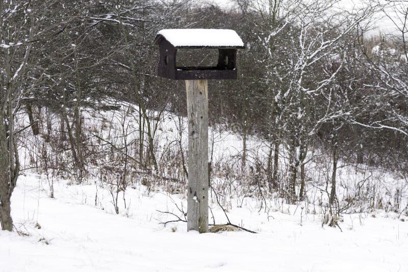 Houten die vogelhuis op een pool met sneeuw tijdens een de wintersto wordt behandeld stock fotografie