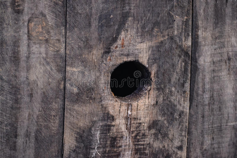 Houten gatenmacro stock foto's