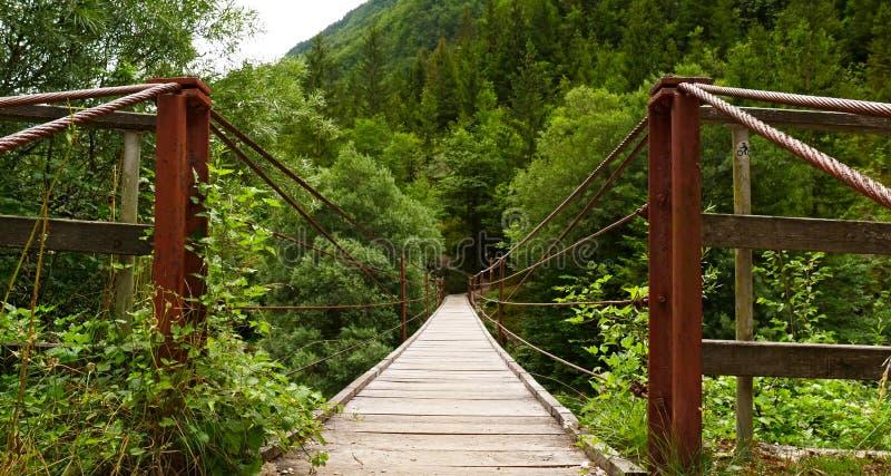 Houten hangbrug in Slovenië royalty-vrije stock afbeeldingen