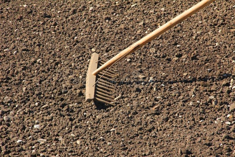 Houten hark, die de grond nivelleren stock foto