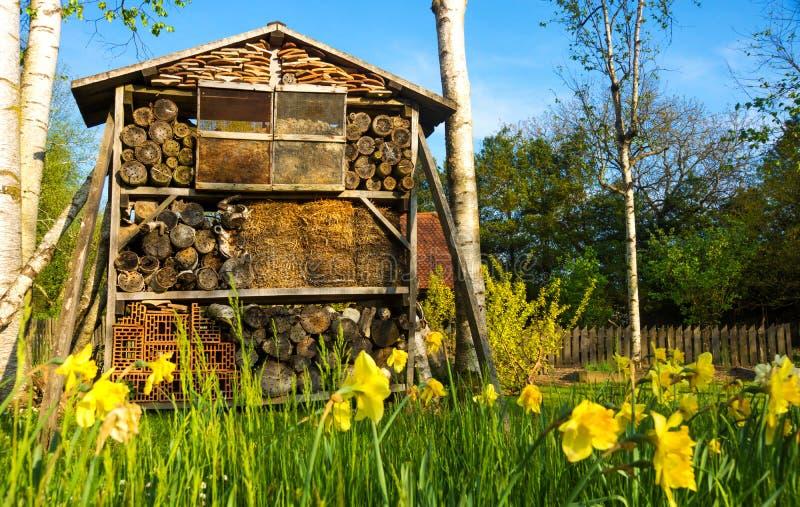 Houten het insectenhotel van het insecthuis stock fotografie