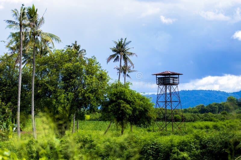 Houten het Platformpost van de Vooruitzichttoren in het Bos een Hoge Houten Vooruitzichttoren in het Bos royalty-vrije stock foto